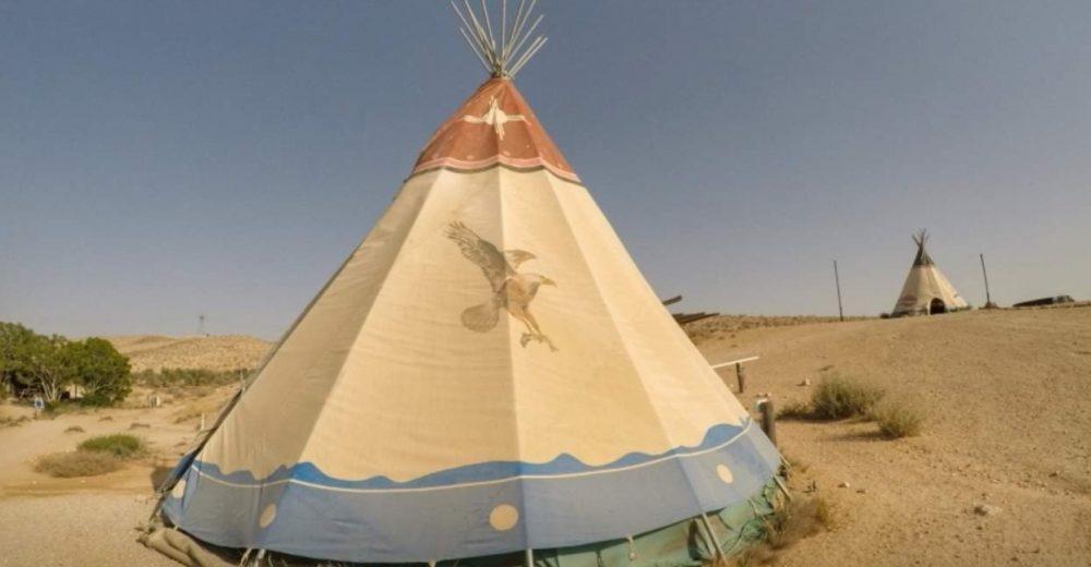 זית המדבר (1)
