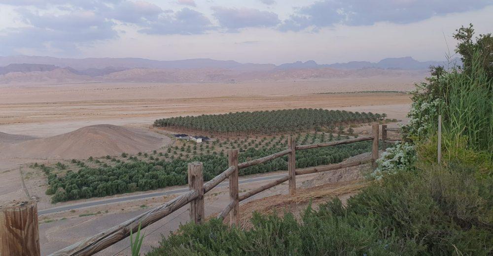 חוות ערנדל (12)